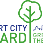 (c) Smart City Award